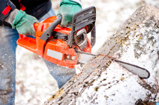 tree service new lenox il, tree removal new lenox il, Joliet Tree Service Specialists